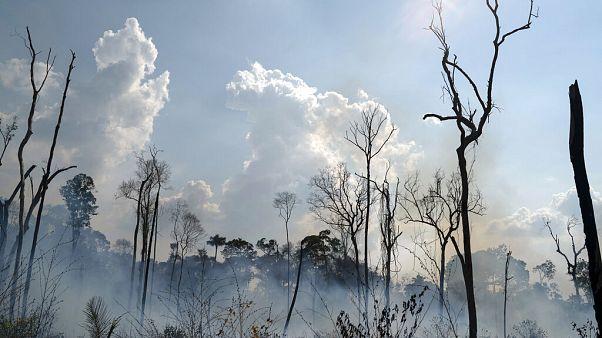 Jair Bolsonaro anuncia criação do Conselho da Amazónia
