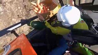 Ausztrál bozóttüzek: a levegőből etetik a túlélő állatokat