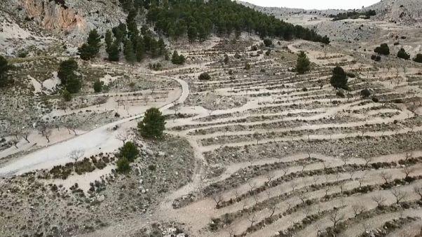 Los peligros de la desertificación y el daño al suelo