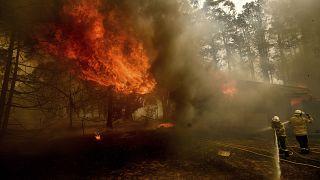 Avustralya'da orman yangınları devam ediyor