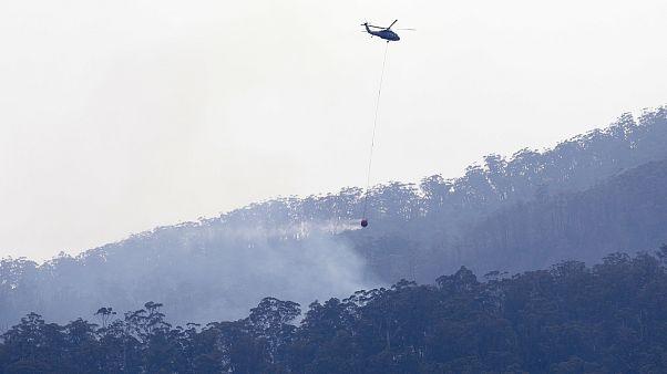 Mueren tres estadounidenses al estrellarse un avión cisterna en Australia