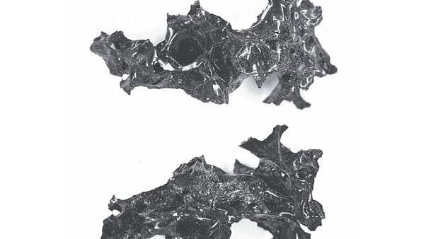 Ο εγκέφαλος ενός θύματος από την έκρηξη του Βεζούβιου μετατράπηκε σε γυαλί!