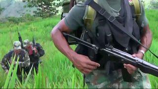 Tierra sin ley entre Colombia y Venezuela: guerrilleros y criminales someten a la población