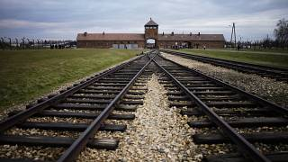 Polish MEP sparks outrage over Nazi prison uniform cattle tweet   #TheCube