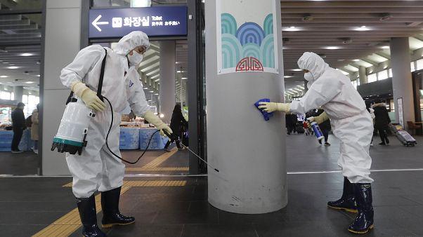 علماء أوروبيون يعبرون عن مخاوفهم مع انتقال فيروس كورونا الجديد إلى بلادهم