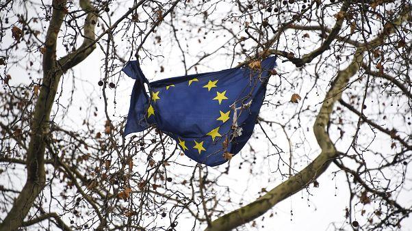علم الاتحاد الأوروبي عالق وممزق على شجرة خارج مبنى البرلمان البريطاني في لندن. 16/12/2019