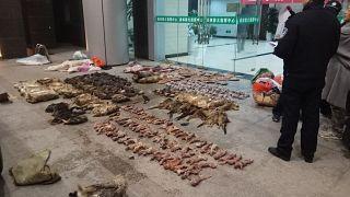 السلطات الصينية تقوم بحظر مؤقت على تجارة الحيوانات البرية