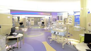 Project depicting the recently opened Sheikh Shakbout Medical City