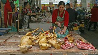 Çin pazarında satlan köpek etleri