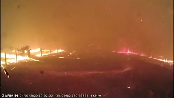 Australian firefighters run to avoid bushfire