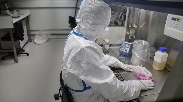 Koronavirüs araştırması yapan laboratuvar