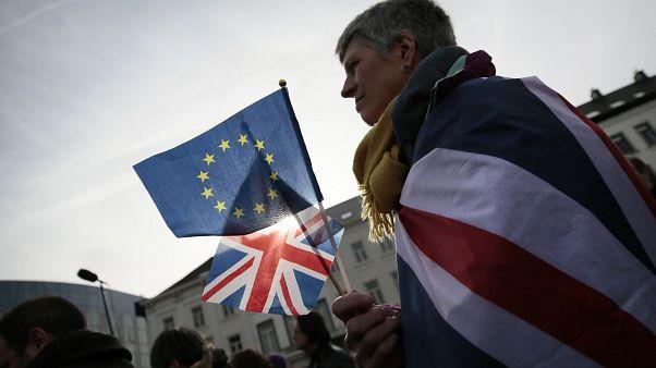 Un chêne aux couleurs britanniques devant le Parlement européen