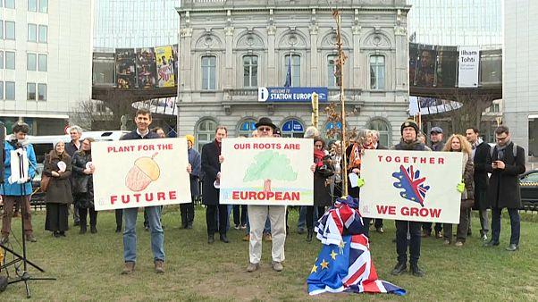 Британский дуб у Европарламента