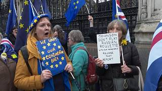 Pro-EU campaigners demonstrate as UK counts down to Brexit