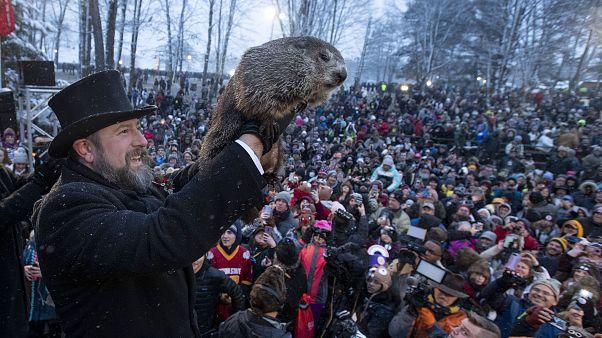 Le Jour de la marmotte : l'hiver sera-t-il long?