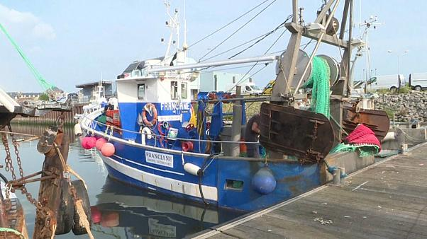 """Первый удар """"брексита"""" - по французским рыбакам"""