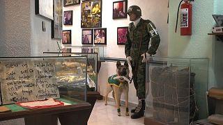 """Un """"museo del narco"""" en México"""