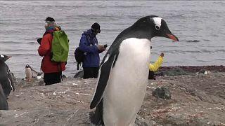 200 Jahre Antarktis-Entdeckung