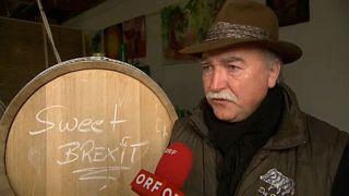Brexit-bort dobott piacra egy osztrák borász