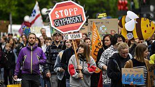 Luxemburg betiltja a glifozát használatát