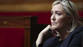 Marine Le Pen has said she is the victim of a political witch-hunt.