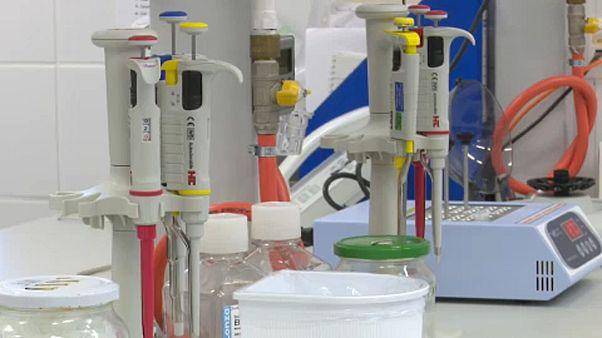 A Szentágothai János Kutatóközpont laborja