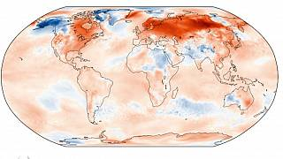 2020 sets record for Europe's hottest January, Copernicus data shows