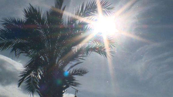 Europa registra el mes de enero más cálido de su historia