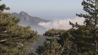 Water bomber planes and crews of firefighters from mainland France battle Corsica fire