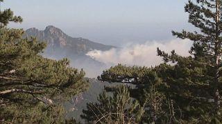 No comment: januári tűzvész Korzikán