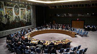Birleşmiş Milletler Güvenlik Konseyi, İdlib'de Türk ve Suriye Orduları arasındaki yaşanan çatışmalar nedeniyle perşembe günü acil olarak toplanıyor.