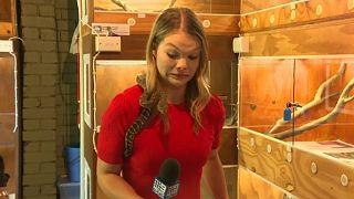 المراسلة الأسترالية سارة كاوت أثناء إعدادها تقريراً عن الأفاعي