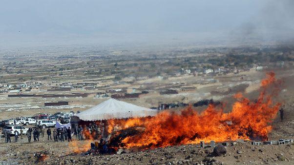 ۶ مقام امنیتی افغانستان به دلیل رهبری شبکه توزیع مواد مخدر بازداشت شدند