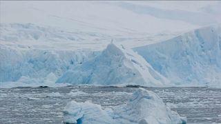 شاهد: انهيار جليدي ضخم في القارة القطبية الجنوبية