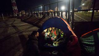 """""""Aprite le frontiere"""": 200 migranti al confine Serbia-Ungheria chiedono di entrare in Europa"""