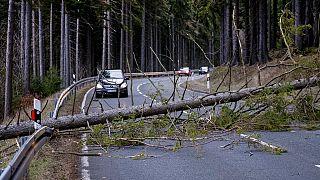 Tempestade Ciara provoca vários feridos