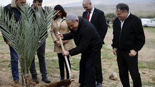 رئيس الوزراء الإسرائيلي بنيامين نتنياهو يزرع شجرة في مستوطنة قرب أريحا في الضفة الغربية، 10 فبراير 2020