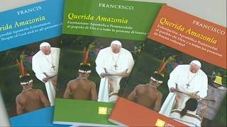 "Enttäuschung über ""Querida Amazonia"": Papst gegen Öffnung des Zölibats"