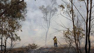 نهاية أزمة الحرائق في ولاية نيو ساوث ويلز الأسترالية