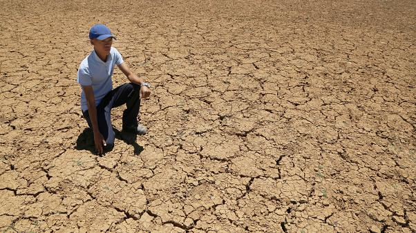 A South African farmer in a cracked bed of a water in November 2019 as the country sweltered under one of the worst droughts in decades.