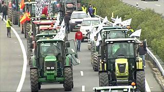 Испанские фермеры требуют помощи