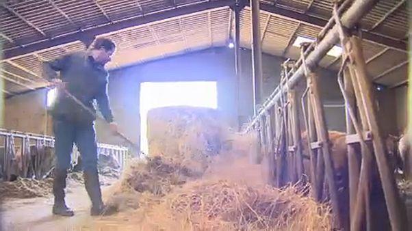 State of the Union: Agrar- und Regionalbehilfen - wem nutzen sie?