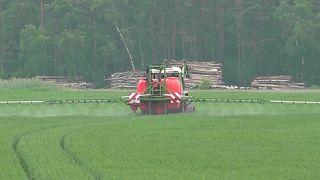 Bayer und BASF: Millionenstrafe für Unkrautvernichter Dicamba in den USA