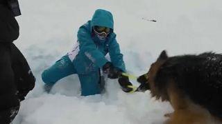 A patrulha de quatro patas dos Alpes