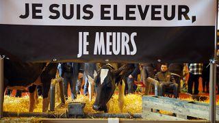 """""""Breves de Bruxelas"""": Corte na PAC terá impacto na agricultura familiar"""
