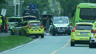 سيارات الشرطة والإسعاف تنتشر في محيط مسجد النور بالعاصمة النرويجية أوسلو عقب إقدام رجل على اقتحام المسجد 11 آب/أغسطس 2019