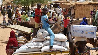النيجر: 20 قتيلا في حادث تدافعٍ أثناء توزيع مواد غذائية على الأهالي (مصادر طبية)