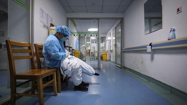 Italian coronavirus cases rise to 17