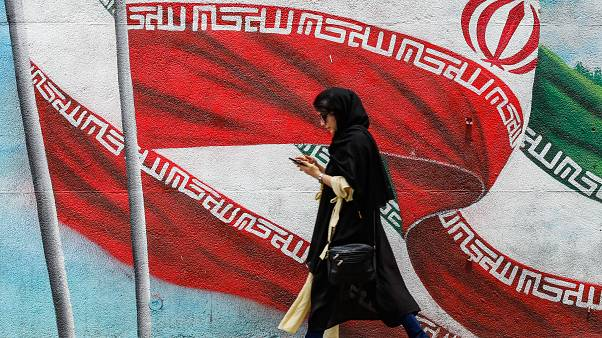 İran'da 8 çevre aktivistine 'ABD ile iş birliği ve casusluk' suçundan 4 ila 10 yıl hapis cezası