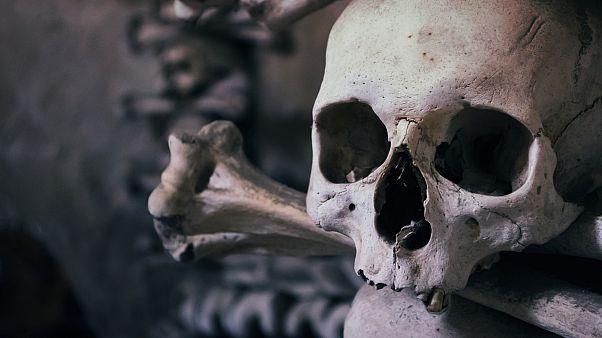 В Бельгии раскопали стены из человеческих костей и черепов